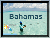 Bahamas Jet Charter Quote  888 3805387